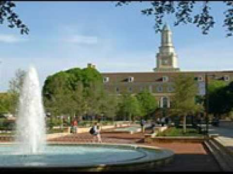 University of North Texas Online MBA Info