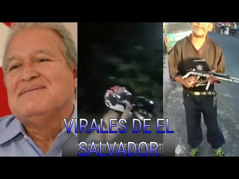 VIRALES DE EL SALVADOR  ¡#3 [The Guanaco]