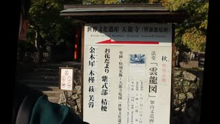 세계문화유산 텐류지 정원 탐방