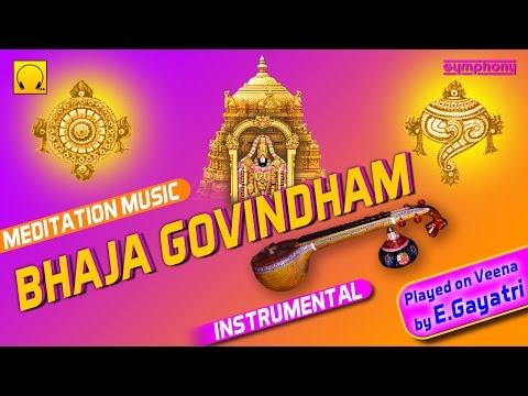 Bhaja Govindham | Veena E Gayathri | Instrumental