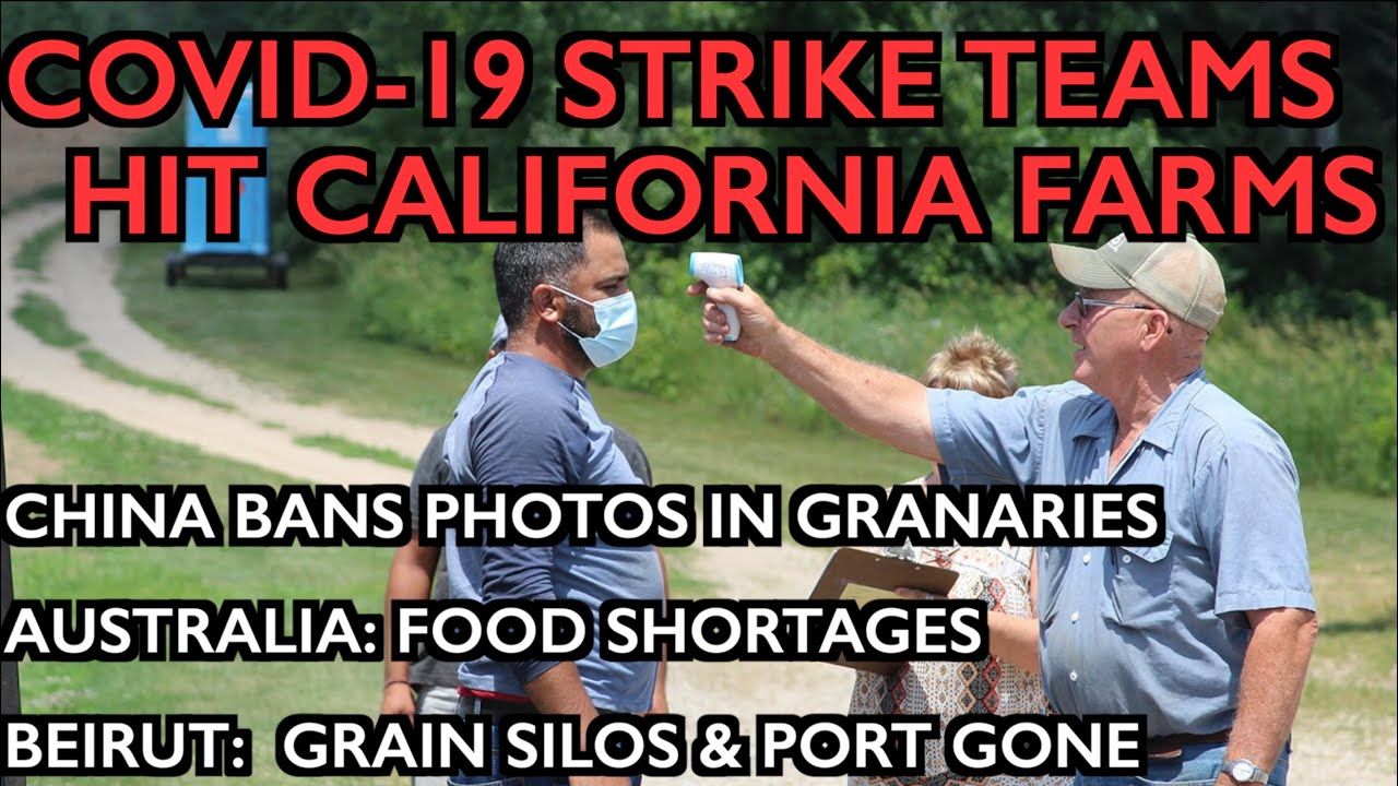 COVID-19 Strike Teams Shut Down Farms - FoodWars Go Hot - Beirut, Aus, China Shortages