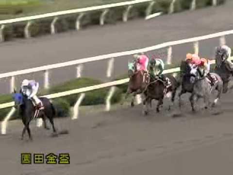 2011/12/08 園田競馬11R 園田金...