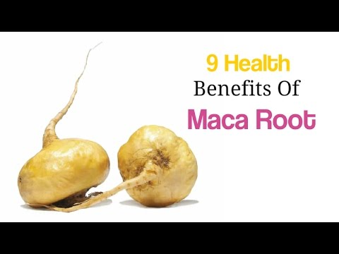 what foods have maca root in them