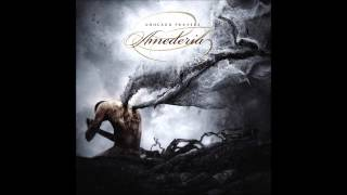 Amederia - Together YouTube Videos