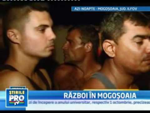 scandal intre tigani la Mogosoaia