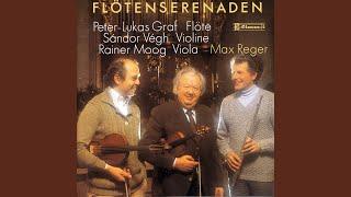 Serenade in D Major, Op. 77a: I. Allegro