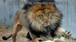 MY OLD MAN - Zac Brown Band Special Video  With LYRICS HD  HQ
