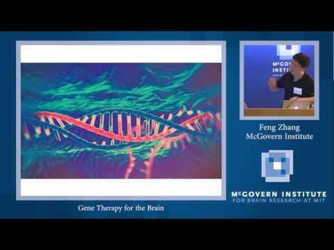 Tan-Yang Center for Autism Research: Feng Zhang
