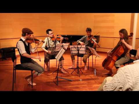 The Lord of the Rings for String Quartet [HD] - I. Introduction