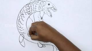 How to Draw a Bakunawa