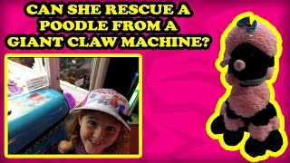 Do you like Claw Machines? Do you like GIANT Claw Machines? This CLAWESOME video is for you! TeamCC