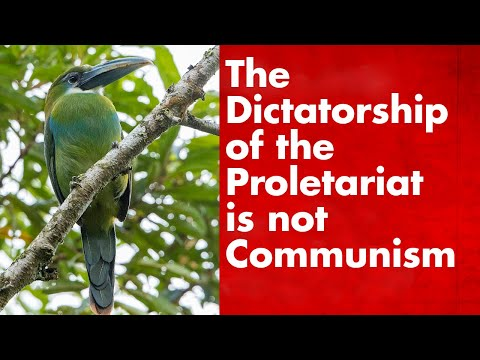 The Dictatorship Of The Proletariat And The Lower Phase Of Communism