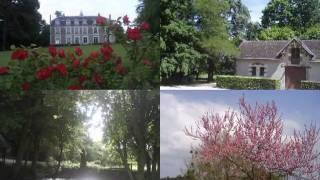 Chateau De Chanteloire - 41150 Chouzy Sur Cisse - Location de salle - Loir-et-cher 41