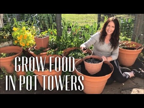 Grow Food in Pot Towers - Chives & Spring Onions