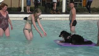 Honden zwemmen in Hessenbad Hoop-Keppel (15-09-2019)