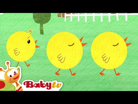 all-the-chicks-are-squeaking-|-nursery-rhymes-and-songs-for-kids-|-babytv