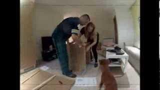 Ikea Gulliver + Ikea Sniglar ( Www.hannen.blogg.no )
