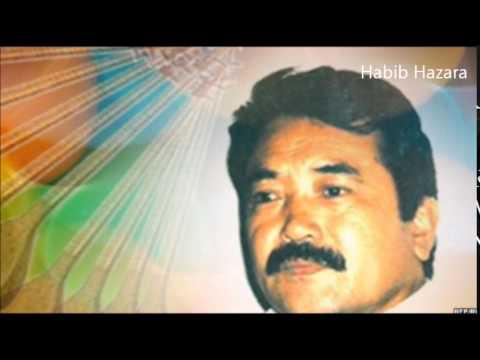 Safdar Tawakoli - Top 10 Hazaragi  Songs   بهترین آهنگهای صفدر توکلی