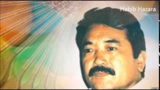 Safdar Tawakoli Top Ten Hazaragi  Songs - بهترین آهنگهای صفدر توکلی