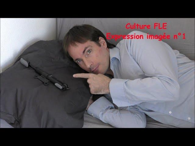【Culture FLE】Expression imagée n°1