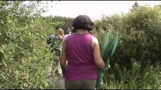 Espace naturel sensible de l'Orne : le Marais du Grand Hazé