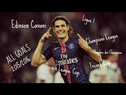 Edinson Cavani ● All 24 Goals ● 2015/2016 ● Ligue 1 ● All Cups