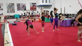 Gambar cover Einung Gymnastics