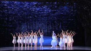 Swan Lake - Tragic Beauty