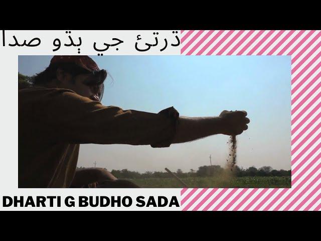 Najaf Ali sindhi song ktn kashish Dharti G sada