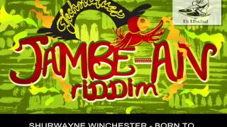 JAMBE AN RIDDIM MIX [FULL PROMO] - TECHNIQUES RECORDS - 2014