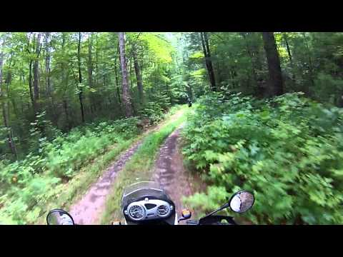 Forestry Service Road 696 Northeast Georgia Dual Sport