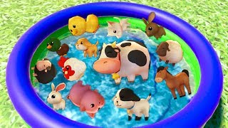 Learn Colors with Zoo Animals in Water Pool