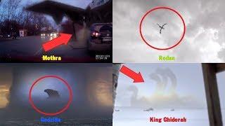 5 Quái Vật Phim Godzilla Ngoài Đời Thật Được Camera Quay Lại | 5 Godzilla Monsters Caught On Camera