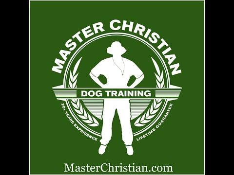Dog Tips at the Vet from Master Christian