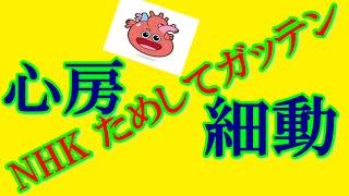 NHKためしてガッテン 血圧 心房細動 http://youtu.be/Mng0K7c1T1s NHK ...