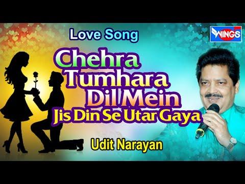 Chehra tumhara Dil Mein Jis Din Se utar gaya | Love Songs | Udit Narayan