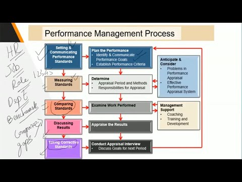 Importance Of Performance Management Process