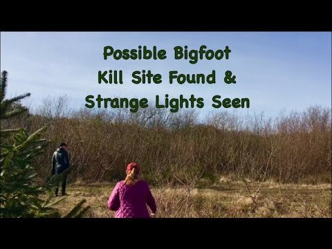 Possible Bigfoot Kill Site Found & Strange Lights Seen with Barb & Gabby