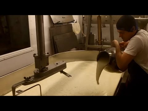 Anster Cheese: A Video Visit To See It Being Made