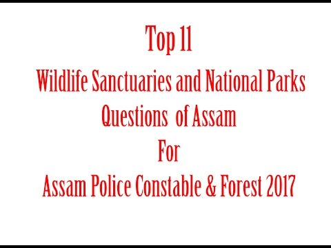 Top 11 Wildlife Sanctuaries & National Parks Questions of Assam For Assam police Constable & Forest