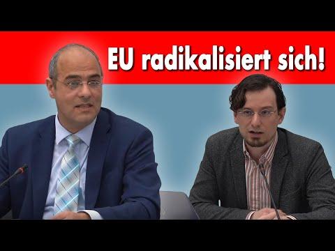 Wie AfD für Bargeld und gegen EU-Verschuldung kämpft