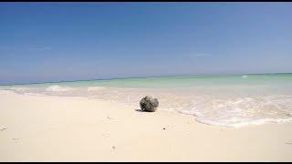 Travel : Cuba 10 Days  : Havane Vinales Cayo Jutias Cayo levisa Varadero