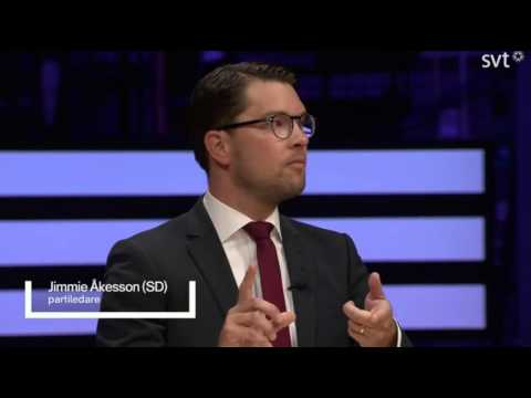 Jimmie Åkesson (SD) slår knockout (English subtitles)