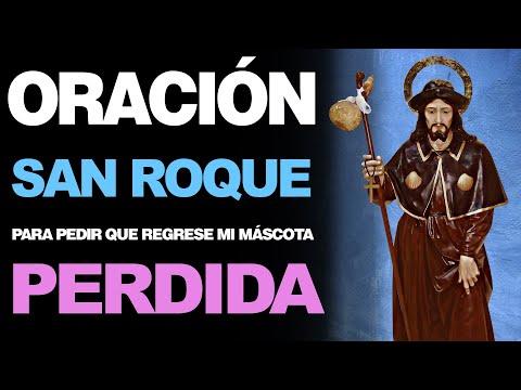 🙏 Oración a San Roque PARA PEDIR QUE REGRESE MI MASCOTA PERDIDA 🐶