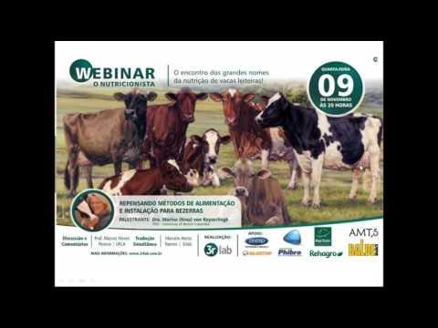 Webinar Gado de Leite - 09/11/2016 - Dra. Marina (Nina) von Keyserlingk