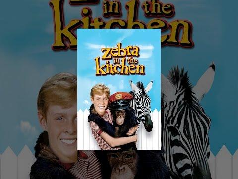 Zebra In The Kitchen Youtube