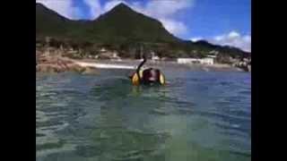 徳之島、畦プリンスビーチ、金見崎ビーチ、瀬田海浜公園、ヨナマビーチ...