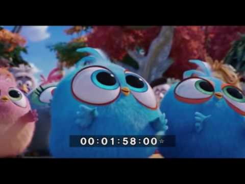 www TamilRockers pm   Angry Birds 2017...