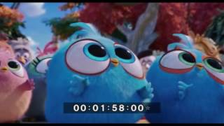 www TamilRockers pm   Angry Birds 2017 English   720p   BDRip   x264   ESubs   750MB 4