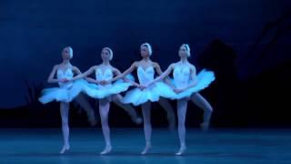Танец маленьких лебедей 720p